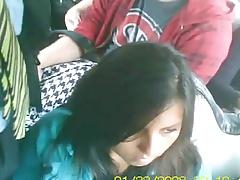 Arrimones En Bus