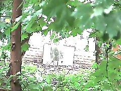 Spycam Pisssing Avi